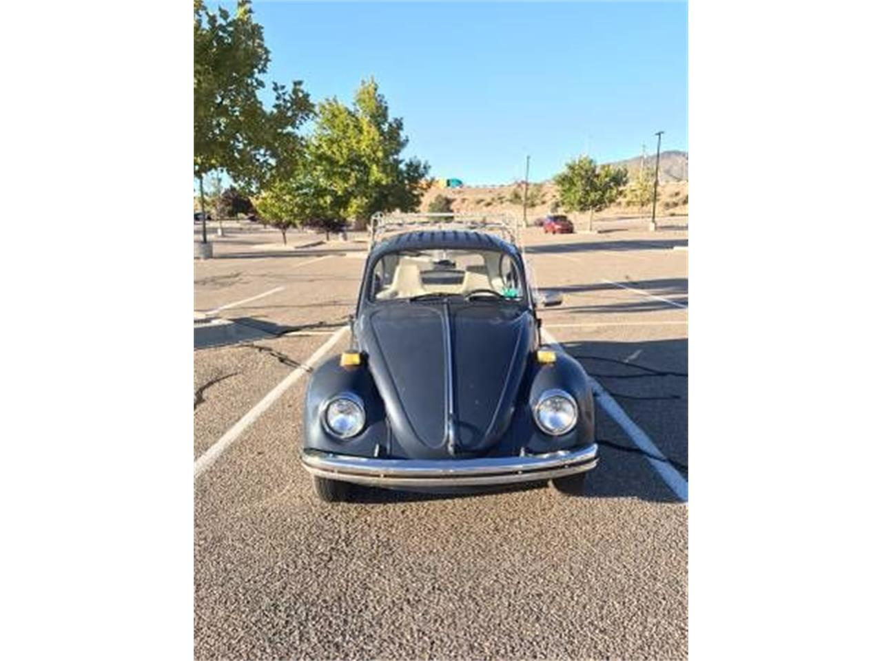 1970 Volkswagen Beetle (CC-1121903) for sale in Cadillac, Michigan