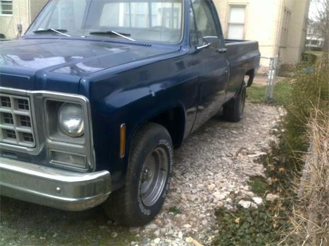 1980 Chevrolet C10 (CC-1122096) for sale in Cadillac, Michigan