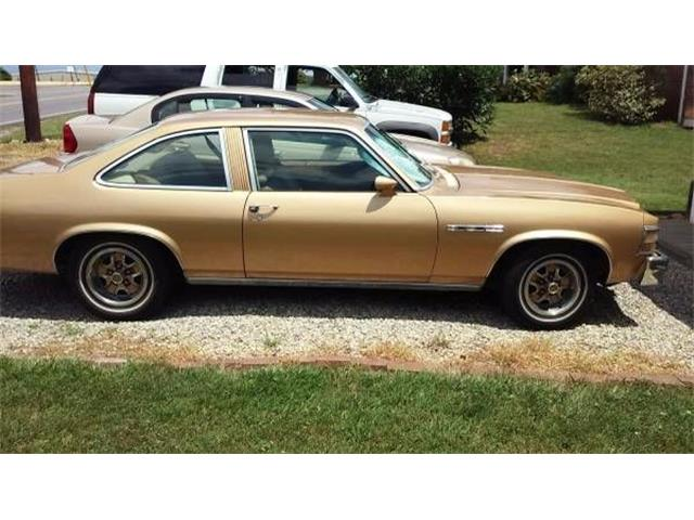 1977 Buick Skylark (CC-1122133) for sale in Cadillac, Michigan