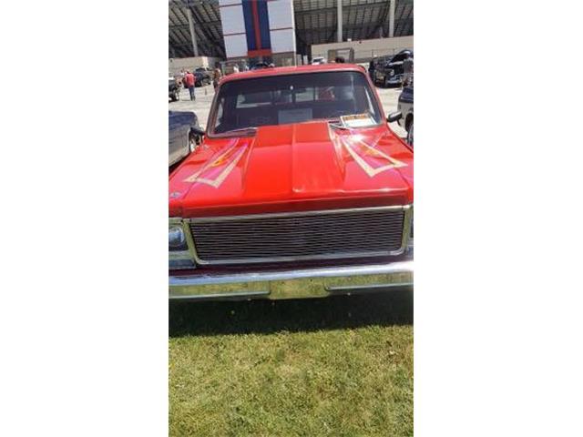 1979 Chevrolet 1500 (CC-1122370) for sale in Cadillac, Michigan