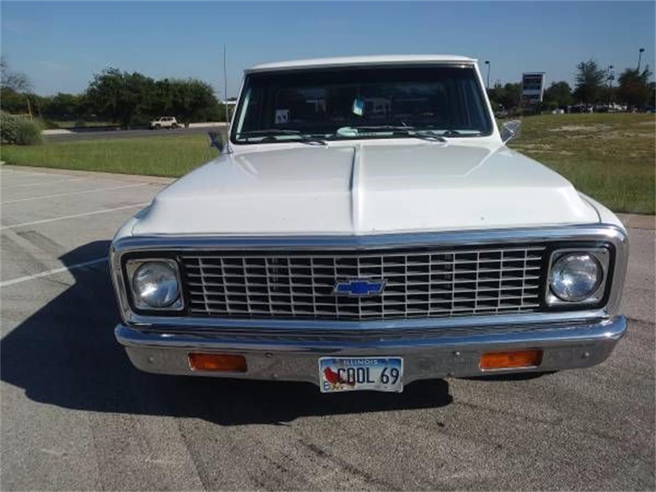 1969 Chevrolet C10 (CC-1122542) for sale in Cadillac, Michigan