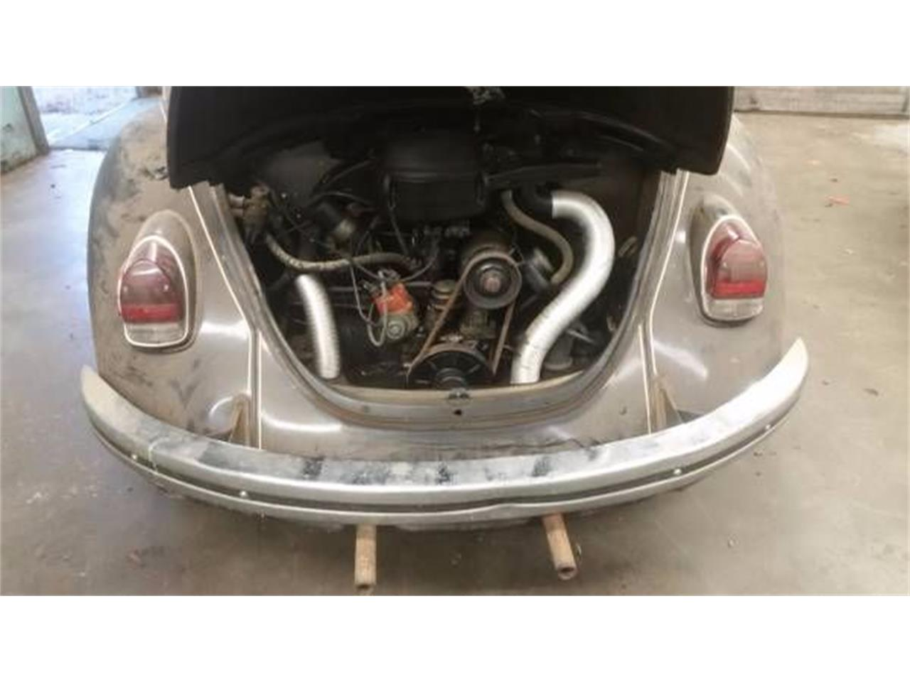 1969 Volkswagen Beetle (CC-1122664) for sale in Cadillac, Michigan