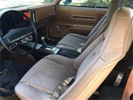 1973 Chevrolet El Camino (CC-1122733) for sale in Cadillac, Michigan