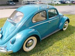 1961 Volkswagen Beetle (CC-1123372) for sale in Cadillac, Michigan