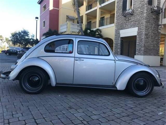 1961 Volkswagen Beetle (CC-1123374) for sale in Cadillac, Michigan