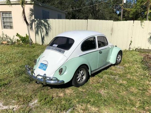1966 Volkswagen Beetle (CC-1123463) for sale in Cadillac, Michigan