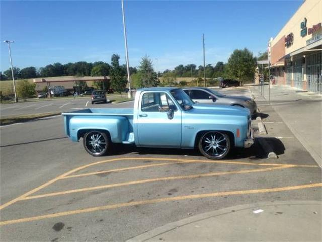 1976 Chevrolet C10 (CC-1123525) for sale in Cadillac, Michigan