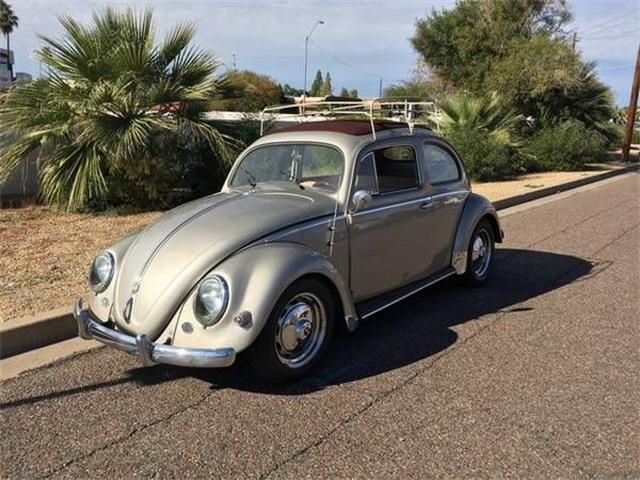 1957 Volkswagen Beetle (CC-1124124) for sale in Cadillac, Michigan