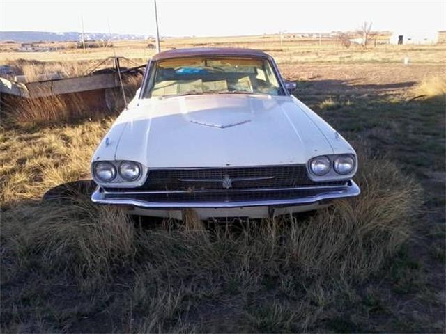 1966 Ford Thunderbird (CC-1124169) for sale in Cadillac, Michigan