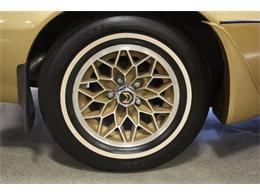 1979 Pontiac Firebird (CC-1124223) for sale in Cadillac, Michigan