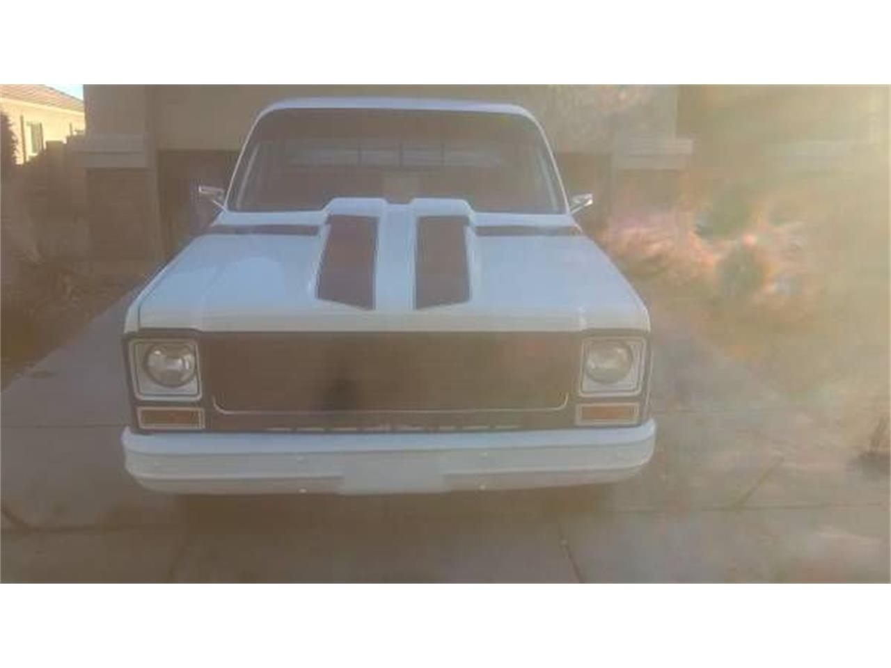 1979 Chevrolet C10 (CC-1124563) for sale in Cadillac, Michigan