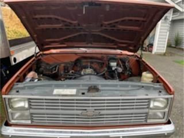 1983 Chevrolet C10 (CC-1124809) for sale in Cadillac, Michigan
