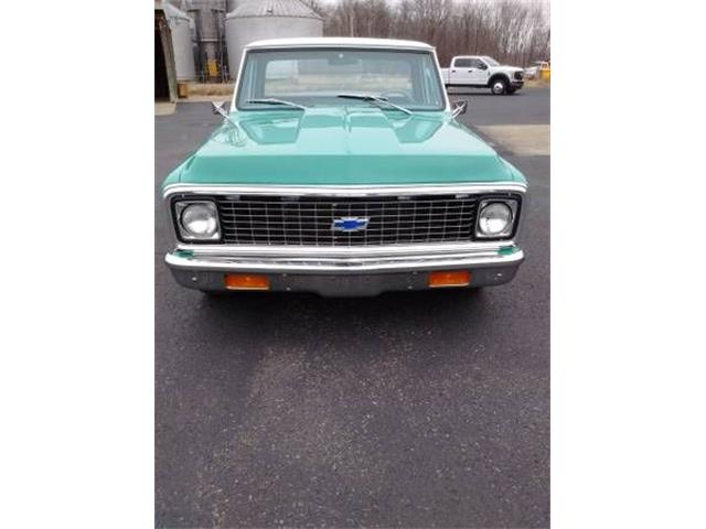 1969 Chevrolet C10 (CC-1124998) for sale in Cadillac, Michigan