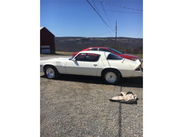 1978 Chevrolet Camaro (CC-1125587) for sale in Cadillac, Michigan