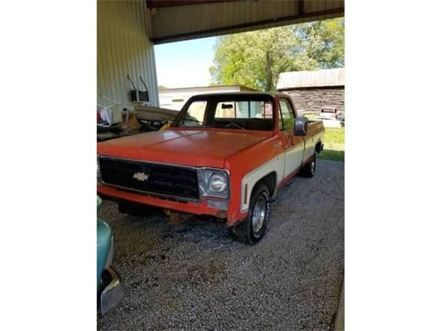 1976 Chevrolet Pickup (CC-1125944) for sale in Cadillac, Michigan