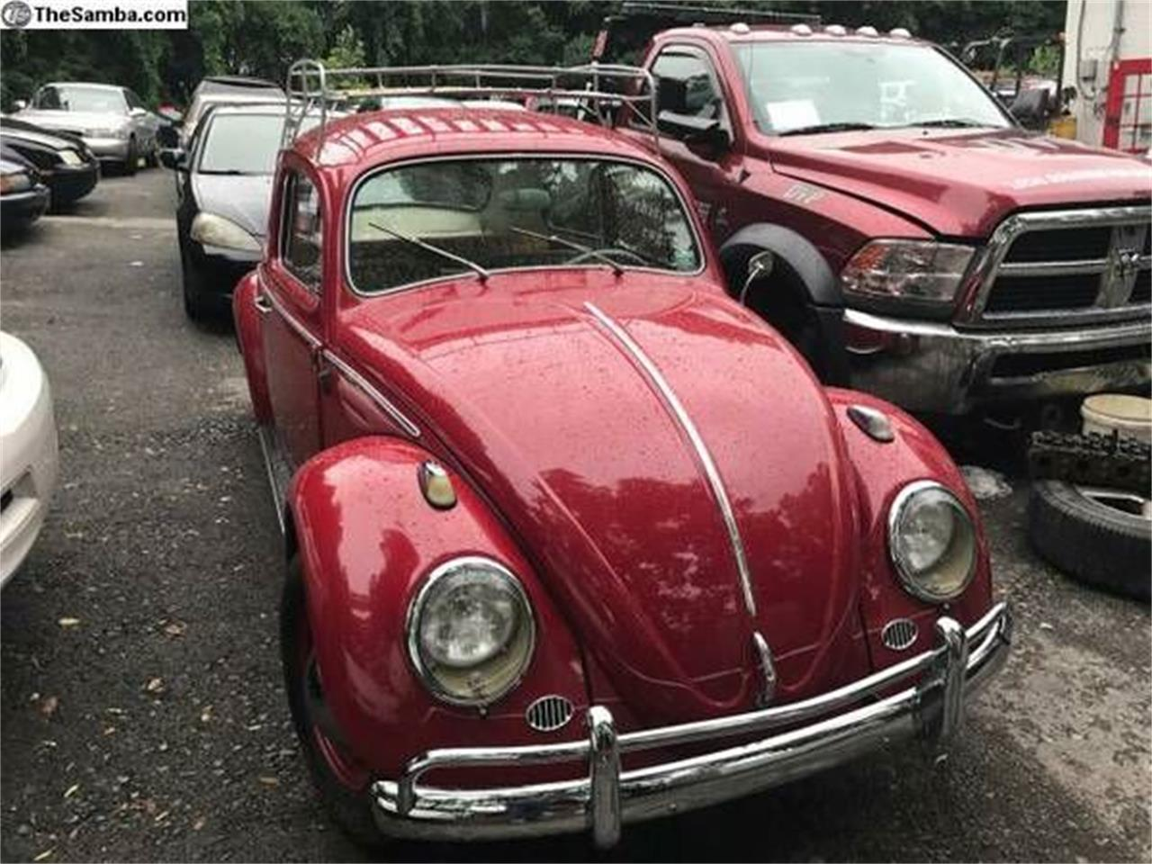 1961 Volkswagen Beetle (CC-1120598) for sale in Cadillac, Michigan