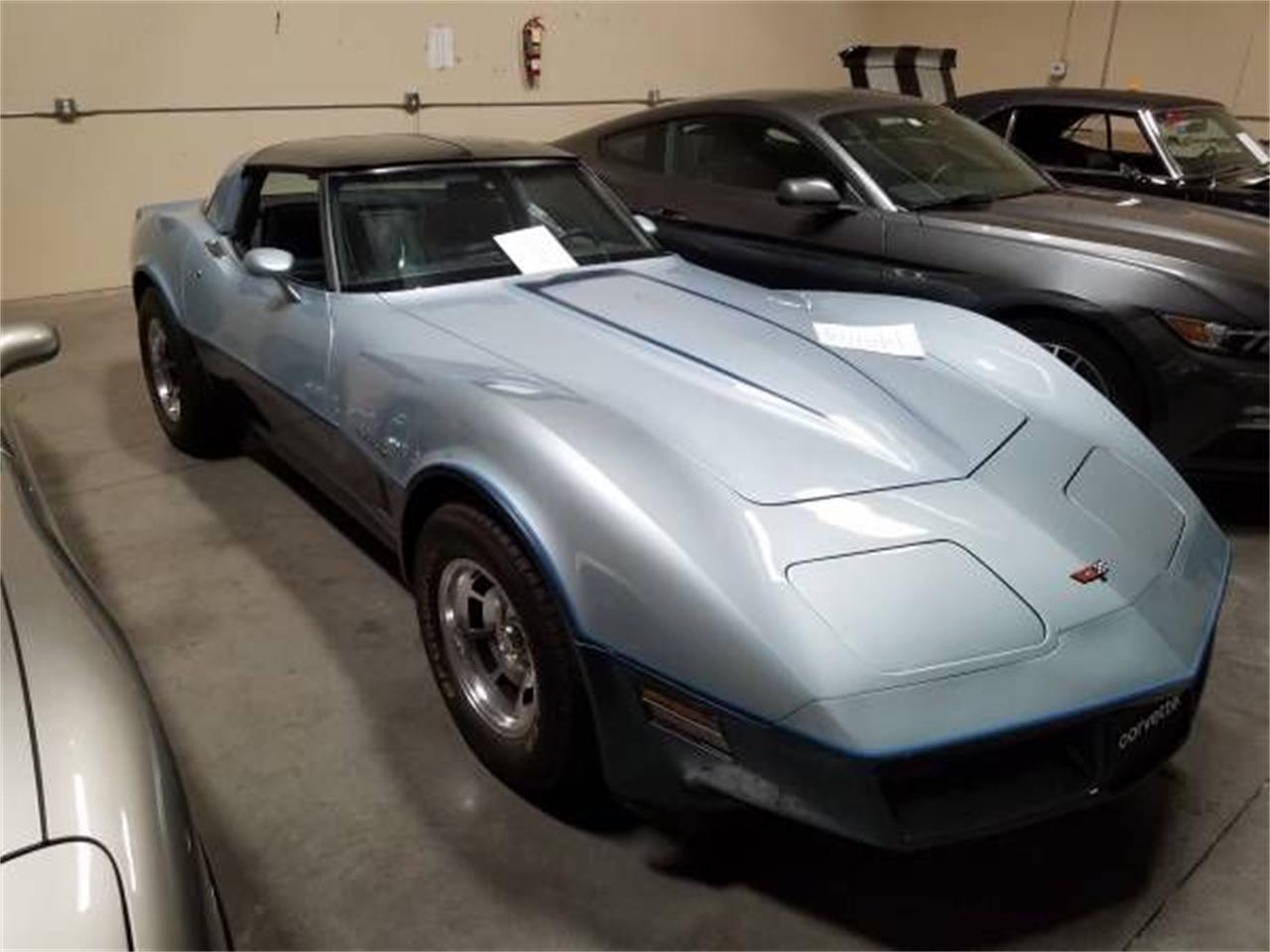 1982 Chevrolet Corvette (CC-1126374) for sale in Cadillac, Michigan