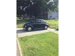 1964 Volkswagen Beetle (CC-1126393) for sale in Cadillac, Michigan