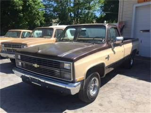 1984 Chevrolet C10 (CC-1126636) for sale in Cadillac, Michigan