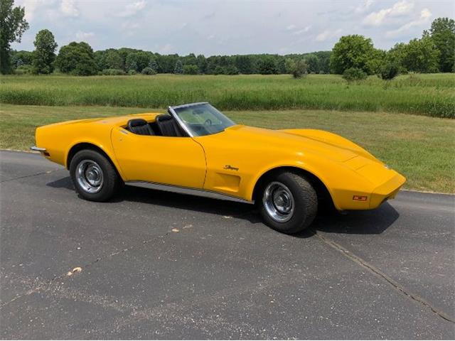 1973 Chevrolet Corvette (CC-1126826) for sale in Cadillac, Michigan