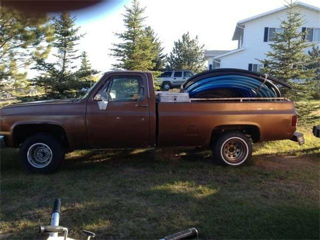 1981 Chevrolet Pickup (CC-1126865) for sale in Cadillac, Michigan