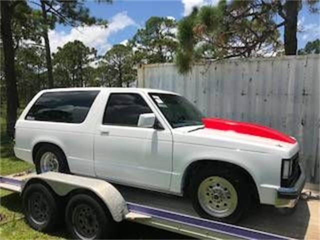 1989 Chevrolet Blazer (CC-1126889) for sale in Cadillac, Michigan