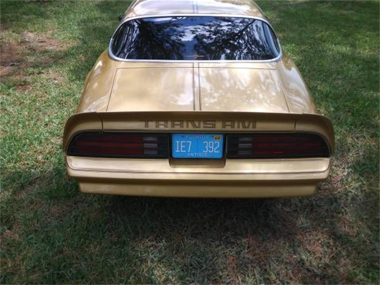 1978 Pontiac Firebird Trans Am (CC-1127388) for sale in Cadillac, Michigan