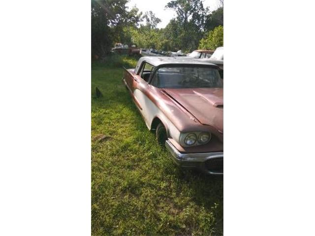 1960 Ford Thunderbird (CC-1120076) for sale in Cadillac, Michigan