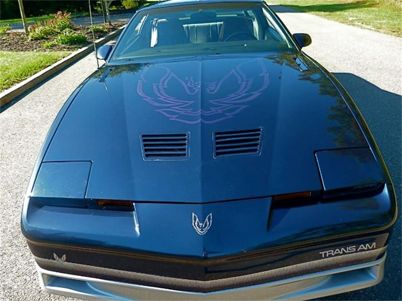 1986 Pontiac Firebird Trans Am (CC-1120787) for sale in Cadillac, Michigan