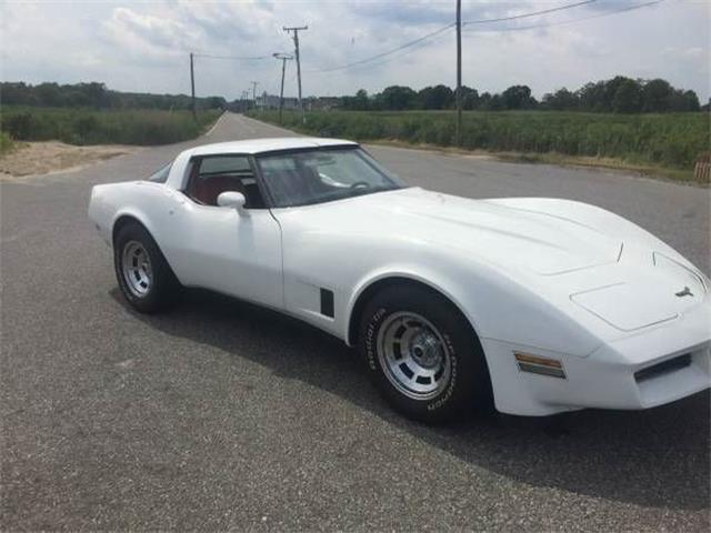 1980 Chevrolet Corvette (CC-1120832) for sale in Cadillac, Michigan