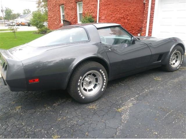 1981 Chevrolet Corvette (CC-1120987) for sale in Cadillac, Michigan