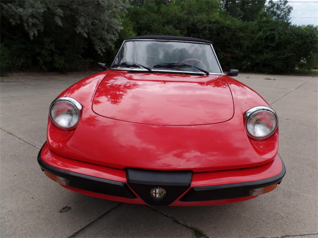 1985 Alfa Romeo Spider (CC-1132525) for sale in Clinton Township, Michigan