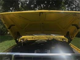 1979 Ford F150 (CC-1132693) for sale in Cadillac, Michigan