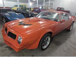 1976 Pontiac Firebird Trans Am (CC-1132697) for sale in Cadillac, Michigan
