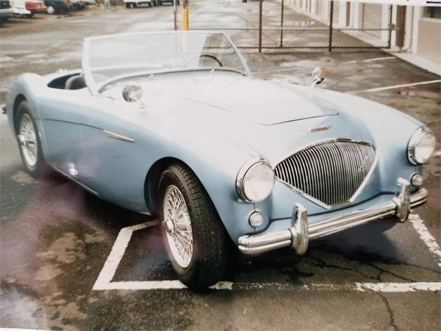 1954 Austin-Healey 100-4 (CC-1134831) for sale in Reno, Nevada