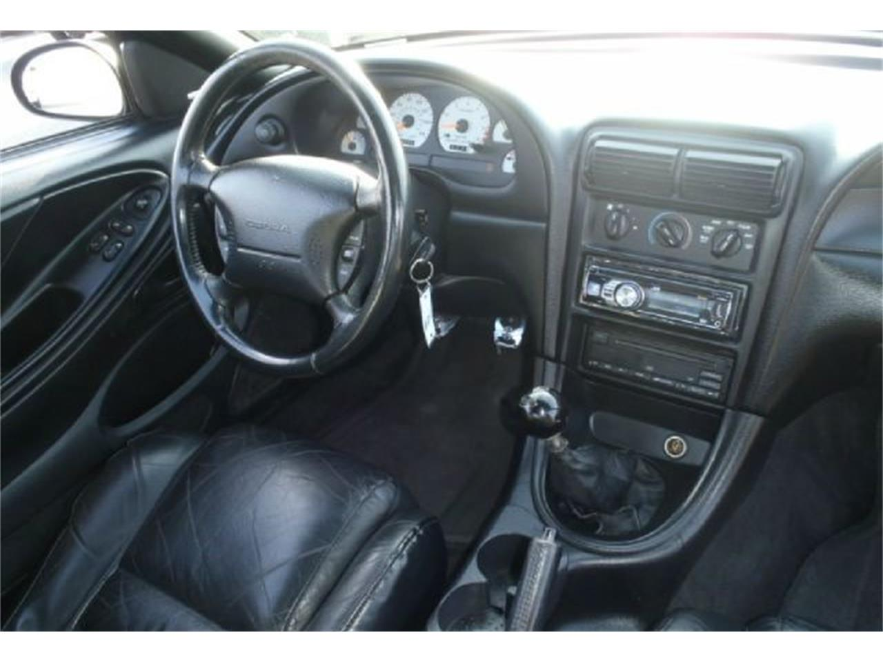 1998 Ford Mustang Cobra (CC-1135707) for sale in Stratford, New Jersey
