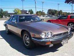 1985 Jaguar XJS (CC-1135851) for sale in Stratford, New Jersey