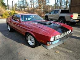 1971 Ford Mustang (CC-1137393) for sale in Cadillac, Michigan