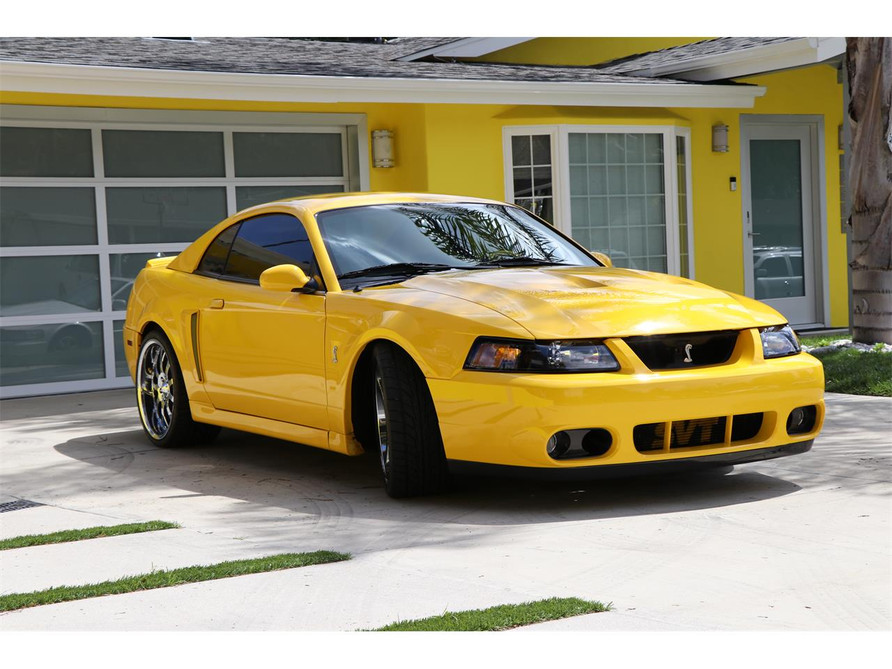 2004 Ford Mustang Cobra (CC-1144666) for sale in Granada Hills, California