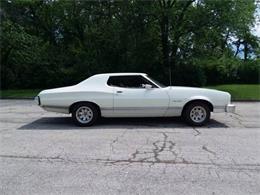 1973 Ford Gran Torino (CC-1146003) for sale in Cadillac, Michigan