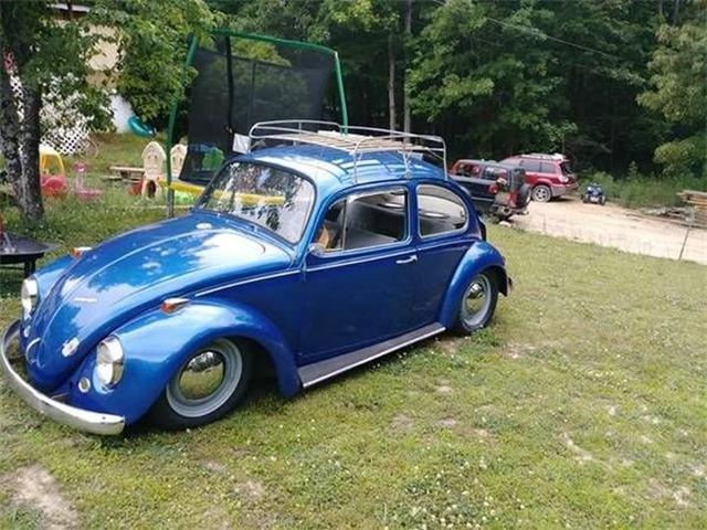1967 Volkswagen Beetle (CC-1146058) for sale in Cadillac, Michigan