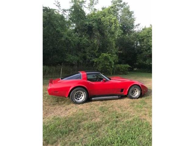 1981 Chevrolet Corvette (CC-1146112) for sale in Cadillac, Michigan