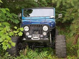 1973 Jeep CJ5 (CC-1146564) for sale in Cadillac, Michigan