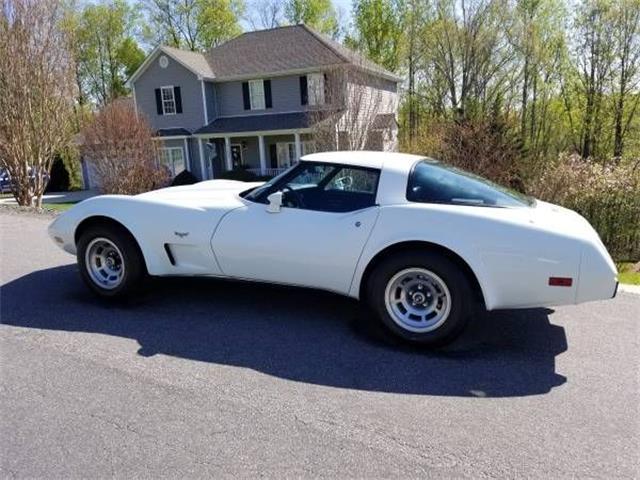 1979 Chevrolet Corvette (CC-1146609) for sale in Cadillac, Michigan
