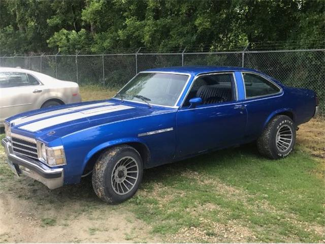 1978 Buick Skylark (CC-1148184) for sale in Cadillac, Michigan