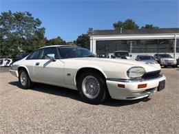 1994 Jaguar XJS (CC-1148486) for sale in Cadillac, Michigan
