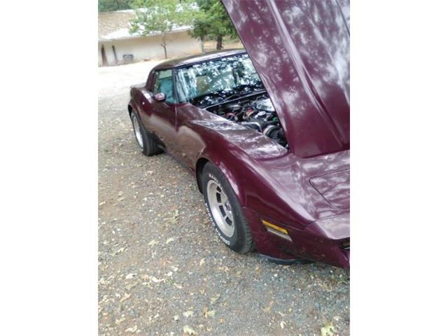 1981 Chevrolet Corvette (CC-1148503) for sale in Cadillac, Michigan