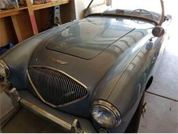 1954 Austin-Healey 100-4 (CC-1148532) for sale in Cadillac, Michigan