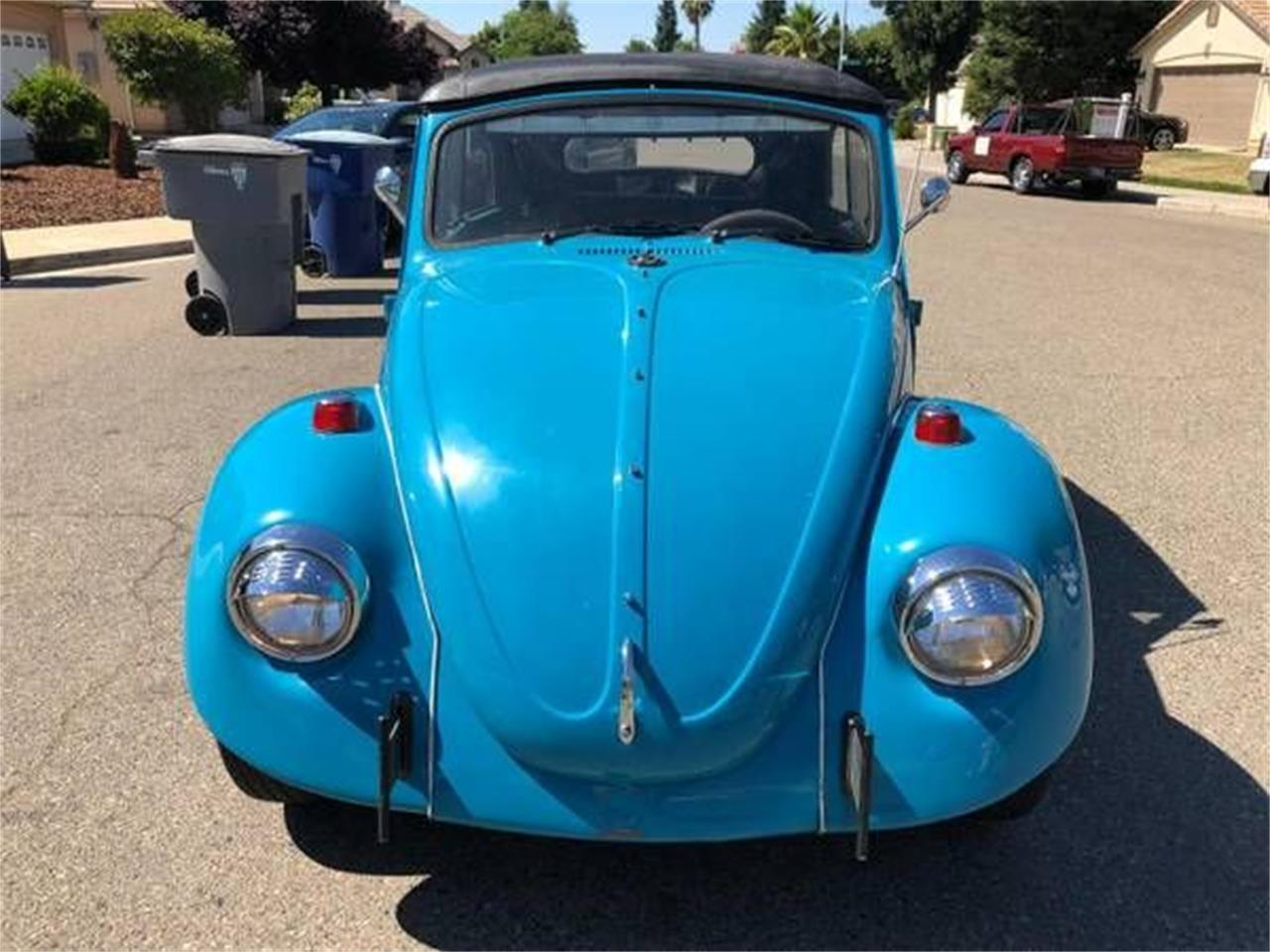 1969 Volkswagen Beetle (CC-1149903) for sale in Cadillac, Michigan