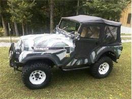 1974 Jeep CJ5 (CC-1151869) for sale in Cadillac, Michigan